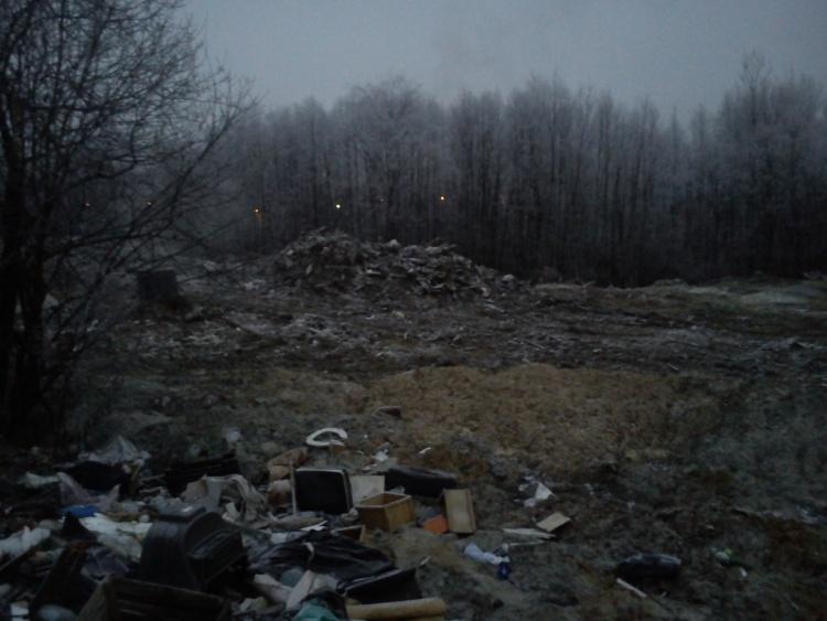 Организатору свалки в Кузьмоловском грозит штраф в 250 тысяч рублей