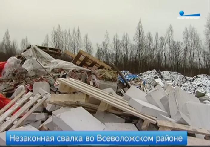 Во Всеволожском районе выясняют, кто привозит мусор на незаконную свалку (видео)