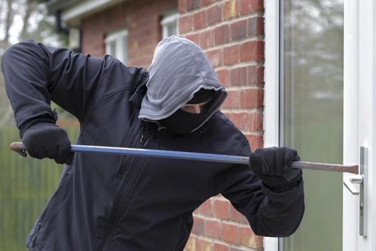 В Ленинградской области раскрыта серия краж из частных домов в садоводствах