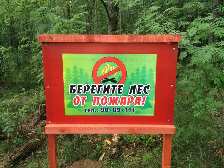 Берегите лес от пожара и засорения!