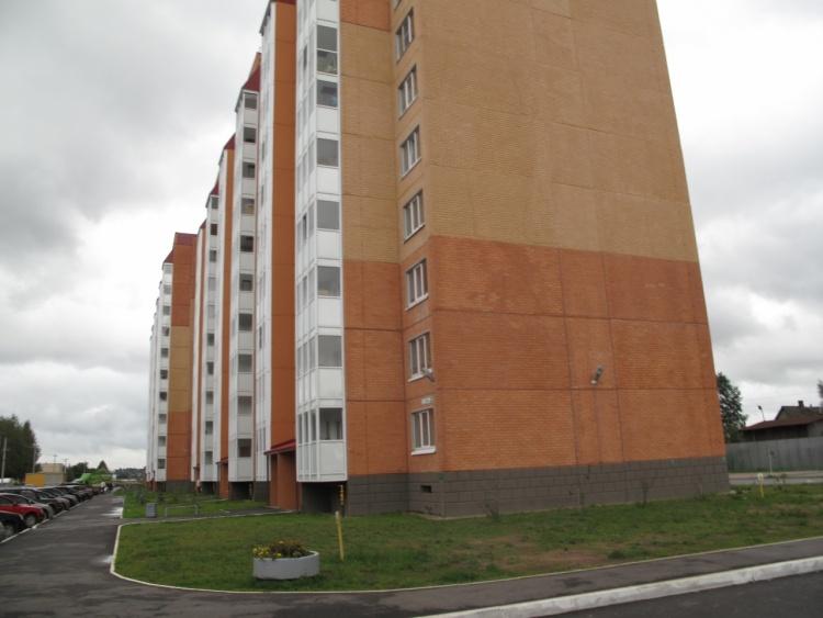 деревня Янино-1