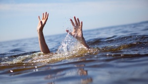 Во Всеволожском районе повар петербургского ресторана нашел на озере тело вора