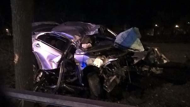 В Колпино водитель снёс машиной дерево и остался жив