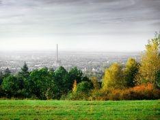 На местных чиновников Всеволожского района завели дело из-за загрязнения земли с ущербом в 0,5 млрд рублей
