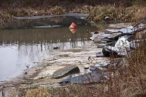 Росприроднадзор расследует загрязнение реки Оккервиль