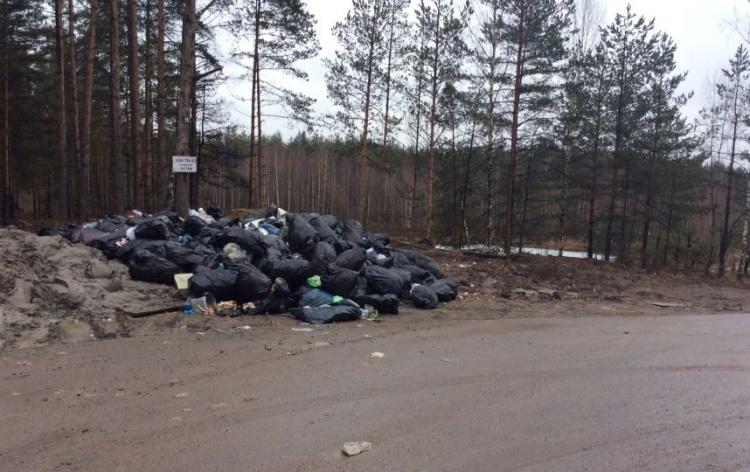 Жители Всеволожского района жалуются на нелегальную свалку