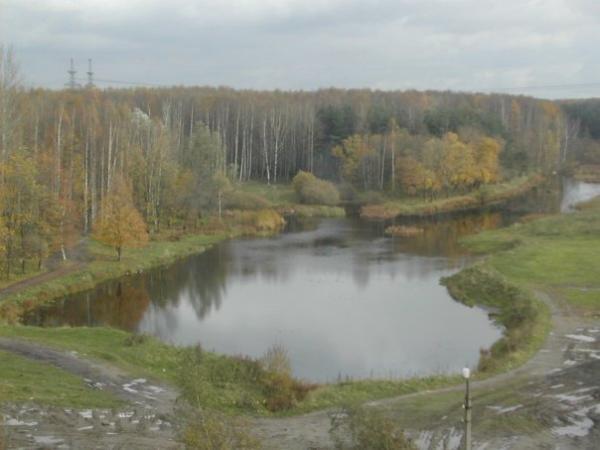 В реке Лапка собрали около 100 кг нефтеотходов