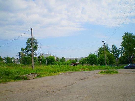 В деревне Янино автомобилисты разрушают газоны