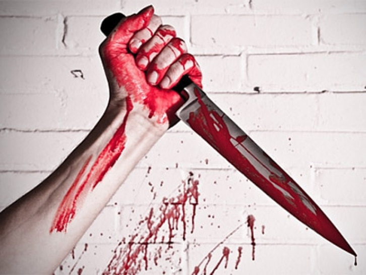Житель Ленобласти, убивший в День влюбленных жену, родителей и годовалую дочь, получил пожизненный срок