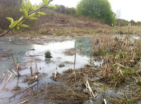 Замусоренные карьеры во Всеволожском районе загрязняют ручьи в поселке им. Свердлова
