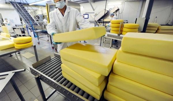 В Ленинградской области откроют новый завод по производству сыра