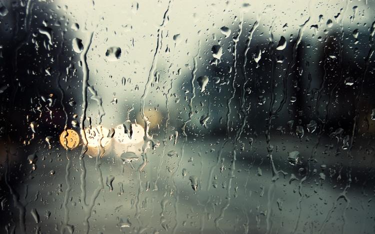 Ленобласти обещаны штормовые выходные