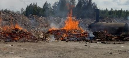 В Мурино дым со свалки привлек экологов