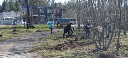 """52 кубометра мусора собрала администрация Всеволожска у """"Дома героев"""" на Колтушском шоссе"""