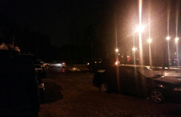 Молодую девушку сбила легковушка в Ленобласти.