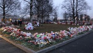 Личность одного из погибших в авиакатастрофе над Синаем жителя Всеволожского района до сих пор не установлена.