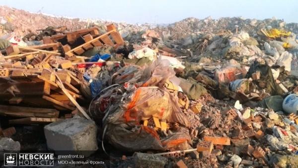 Огромная свалка мусора образовалась прямо во дворе жилого дома