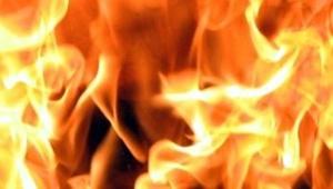 В Ленобласти сгорели две дачные бани
