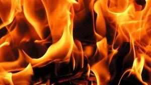 В Ново-Токсово полтора часа горел 60-метровый хозблок