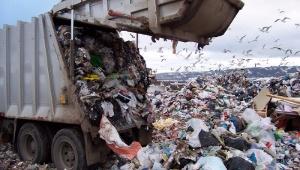 Прокуратура Всеволожска защищает полигон бытовых отходов