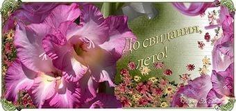 13 сентября в Кузьмоловском состоится праздник «До свидания, лето!»