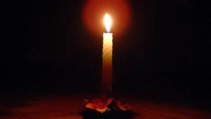 В Токсово без света оставались более 6 тыс. человек. Ленэнерго: Наших - только 400