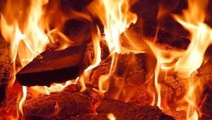 Во Всеволожском районе сгорела дачная баня