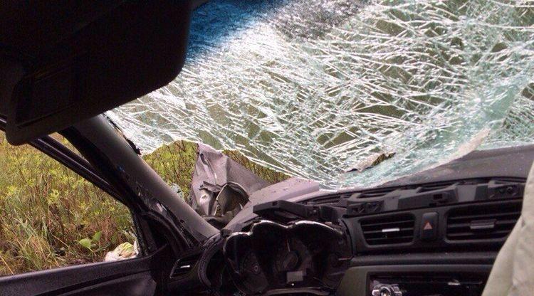 В аварии с трактором на Приозерском шоссе погибли двое