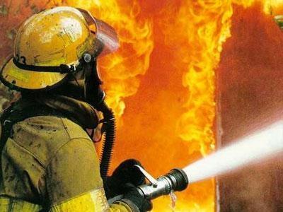 Во всеволожском садоводстве пять часов тушили смертельный пожар