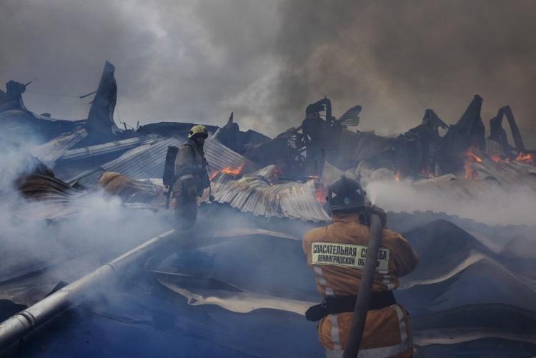 Пожар в Колтушах полностью ликвидирован
